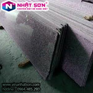VinaNhatSon-Tím Khánh Hòa 3