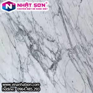 VinaNhatSon-Trắng Vân Gỗ 6