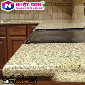 VinaNhatSon-Vàng Bình Định 11